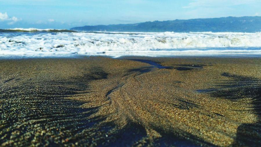 Black Sands,