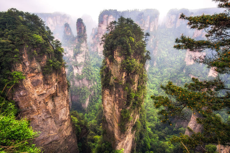 Scenic view of rock formations at wulingyuan scenic area