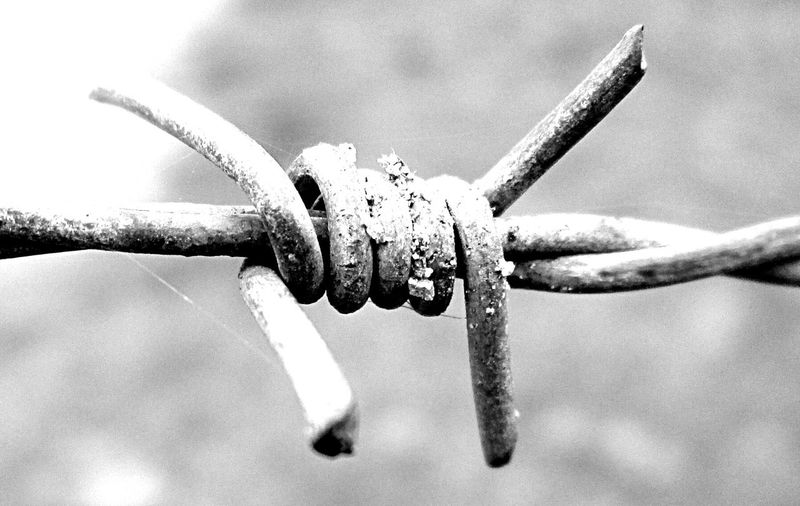 Your Photo For Social Change By PhotoPhilanthropy Bw_collection Macroclique Macro_collection
