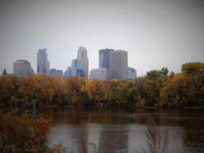 Shot of downtown Minneapolis from Boom Island. Architecture Beauty In Nature Building Exterior City City Skyline Cityscape Cloud - Sky Day Fall Colors Fall Leaves Flower Growth Nature No People Outdoors Sky Skyscraper Tabphotography Tree Urban Skyline Water