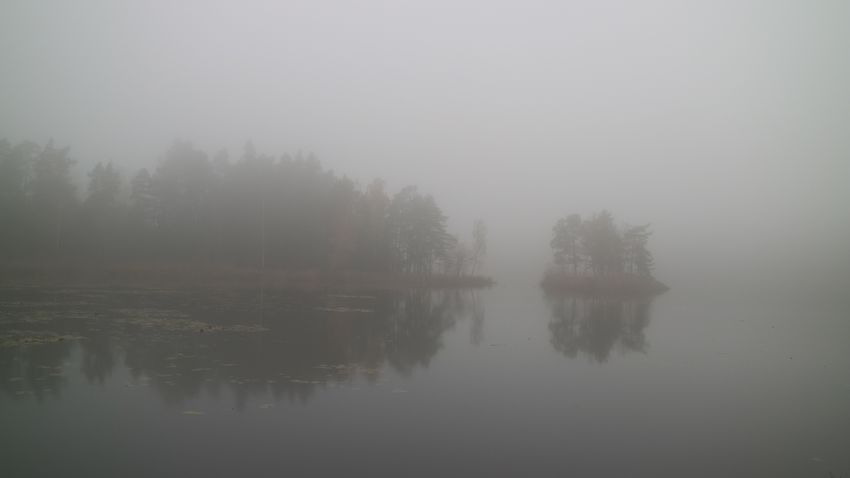 Island Fog Water Tree Tranquility Lake Scenics - Nature Beauty In Nature