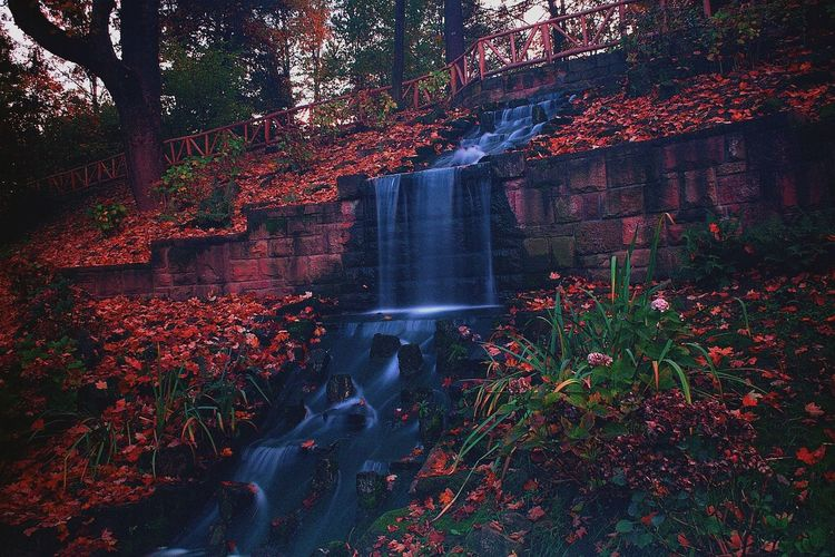 Little Waterfall Time Exposure Germany EyeEmNewHere Long Exposure Tree Motion Waterfall Nature Outdoors Beauty In Nature Autumn Power In Nature Water Forest