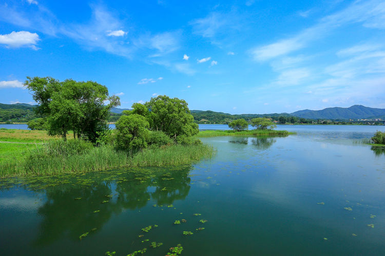 The view of bukhangang river and garden of water ecological park in spring