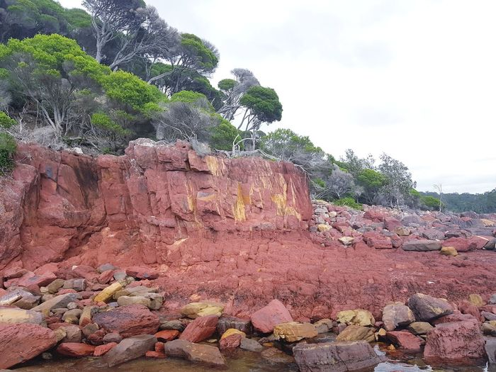 ancient red rocks from the Devonian period (360 million years ago) at Ben Boyd National Park near Eden on the NSW South Coast, Australia. Eden Regional Nsw Regional Town Regional Australia Australia Landscape Coastal Coastal Feature Coastline NSW Australia Nsw Devonian Rock Rock Formation Rocks Red Rocks  National Park No People Outdoors Day Nature Sky Desert