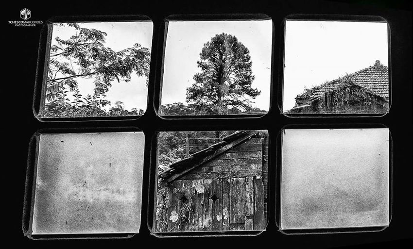 Through the window I see the past so present Paranapiacaba, Santo André, SP, Brasil. Black & White Paranapiacaba Paranapiacaba São Paulo Brasil Santo André  Black And White Black And White Collection  Black And White Photography Black&white Blackandwhite Blackandwhite Photography Blackandwhitephotography Close-up Day Indoors  No People Tree Window