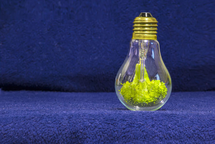 Broccoli in light bulb on carpet