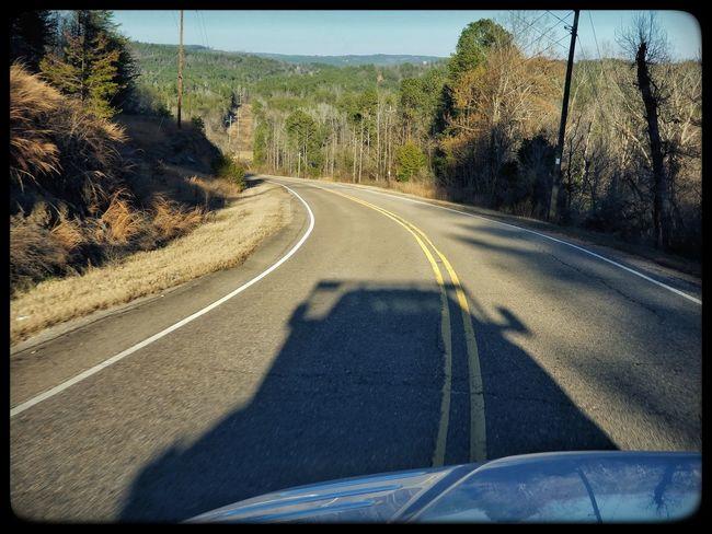 Road Transportation The Way Forward Day Tree No People Sunlight