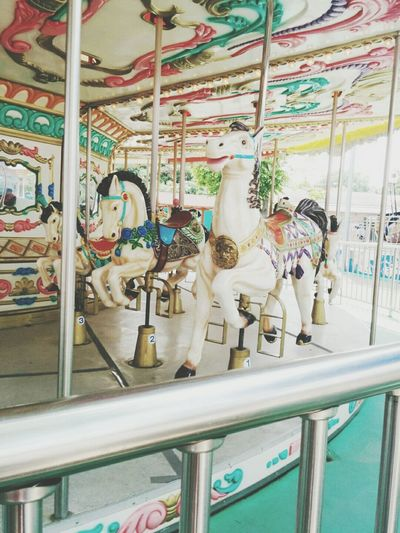Merry-go-round Amusement Park Holiday