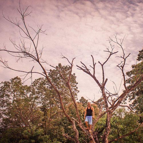 kadaghanan sa ato busy galakaw sa yuta.,kaning tawhana busy pud ug langyaw sa kakahuyan.,. above the chaos Barefoot Nature Goodmorningsunshine Tclinthemix Deadtree Cagayan De Oro City