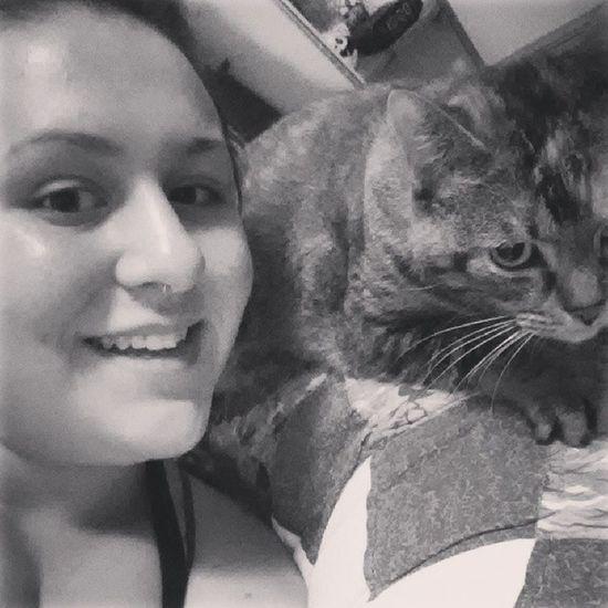 Catlove Snuggles Fuzzball  Felinefriend