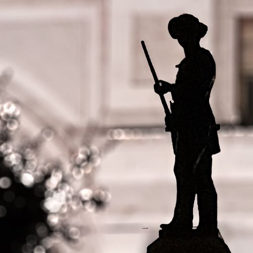 Close-up of silhouette statue