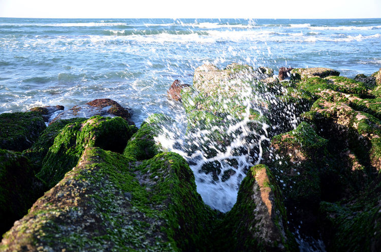 Beauty In Nature Day Horizon Over Water Motion Nature No People Outdoors Power In Nature Rock - Object Scenics Sea Sky Water Wave 台灣 老梅石槽
