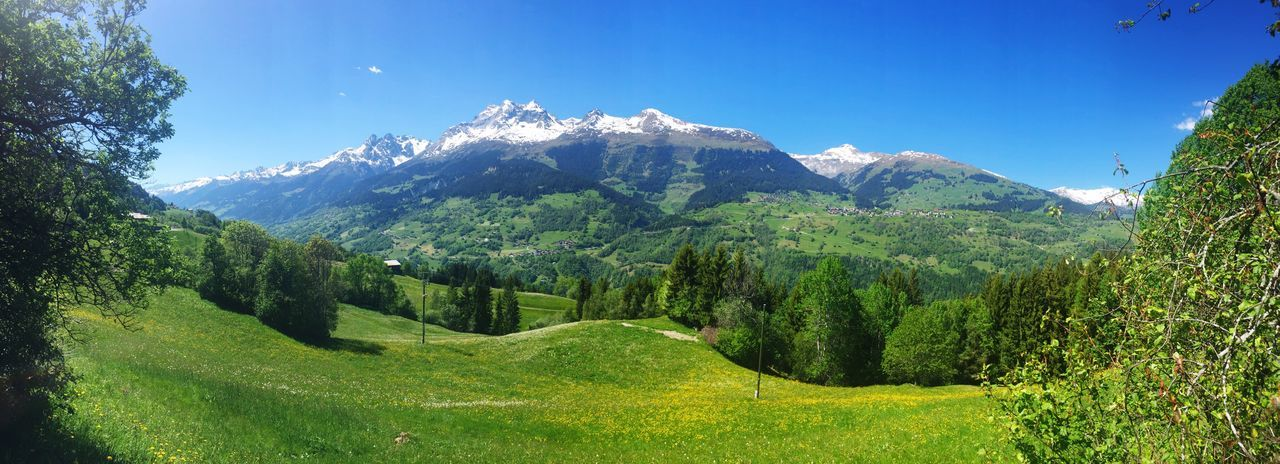 Panoramic View Brigelser Hörner Surselva Swiss Alps Mountain Nature Beauty In Nature Day Tranquil Scene Tree Outdoors Mountain Range Landscape Green Color Scenics Growth No People Sky Clear Sky (null)Refueling Energy Relaxation Moment Of Excellence Enjoyment