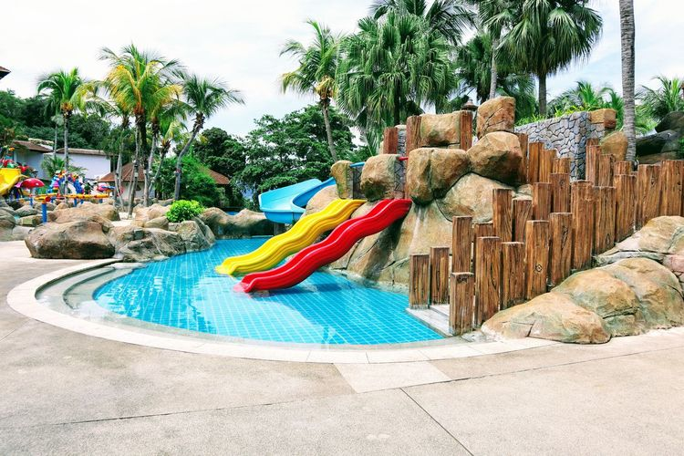 A combination of mix colours and lines man made and natural Tree Dragon Multi Colored Water Park Water Slide Pool Party Slide - Play Equipment Amusement Park Ride Sculpture Amusement Park Outdoor Play Equipment Playground Slide