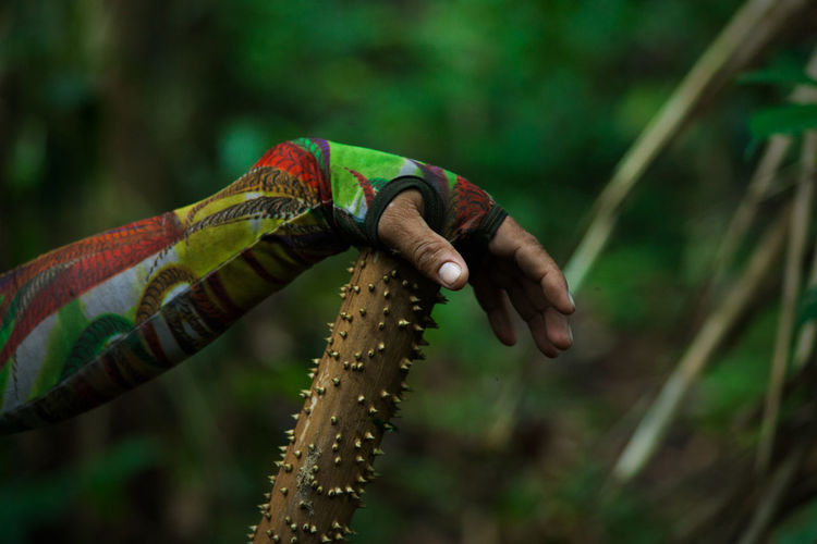 Show me your world. Human Body Part Focus On Foreground Human Hand Hand One Person Day Real People Animal Wildlife Nature Lifestyles Outdoors Finger Djungle Selva Wildlife Wild Wilderness Cultures Tribe Tikuna Colors Power In Nature Rainforest Amazonas Amazon