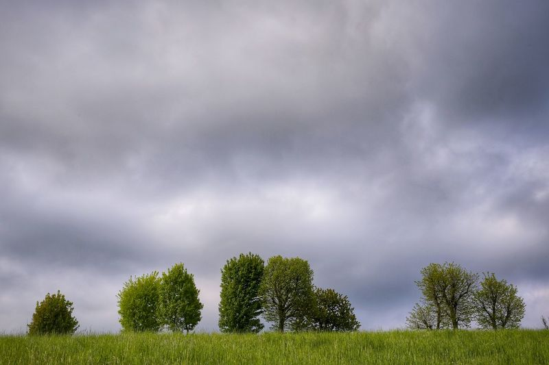 Asiago Highland Vicenza Veneto Italy Travel Photography Travel Voyage Traveling Mobile Photography Fine Art Canon Eos 5d Mark Iii Scenic Landscapes Nature Inspired By Nature Little Green Shapes Against A Cloudy Background Mobile Editing