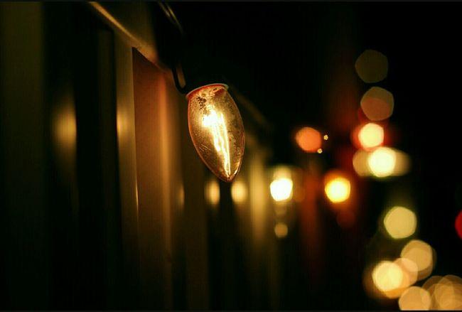 Twinkle, twinkle, little lights. Los Feliz, California Best Christmas Lights Fave  Christmastime Joy EyeEm
