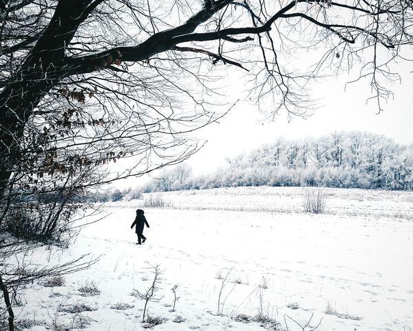 🚶🏔❄ | lonely journey Igerskrakow Igerspoland EyeEm Best Shots EyeEmNewHere EyeEm Gallery EyeEm Selects Nature_collection Naturelovers Nature_perfection Poland Vscocam Winter Bestoftheday Shotz_world Shotz_in_nature Worldwide_shot Winter Trees Winter_collection Bestnatureshots Shotoftheday Perspectives On Nature Naturephotography Silhouette Nature Outdoors Day