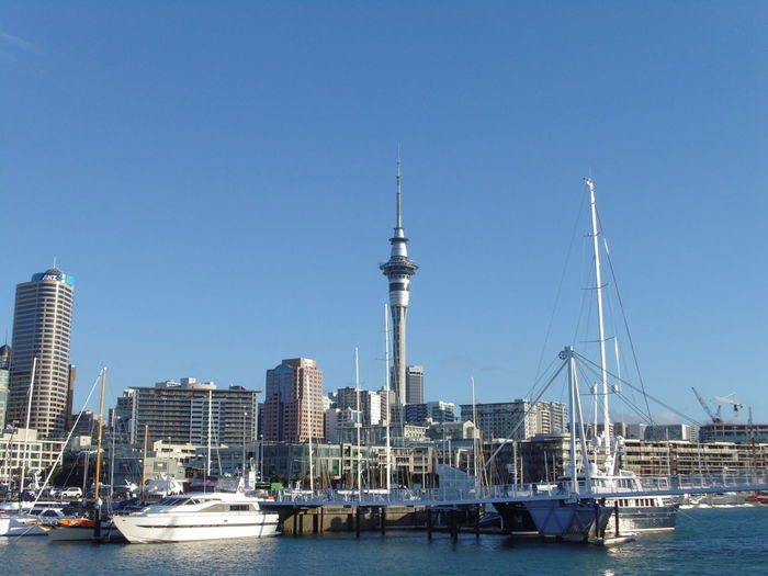 Auckland Summer Auckland City Auckland Sky Tower Yachts Architecture Boats Building City Clear Sky Harbor Modern Nature Outdoors Sky Sky Tower Auckland Skyscraper Tower Transportation Travel Water Waterfront