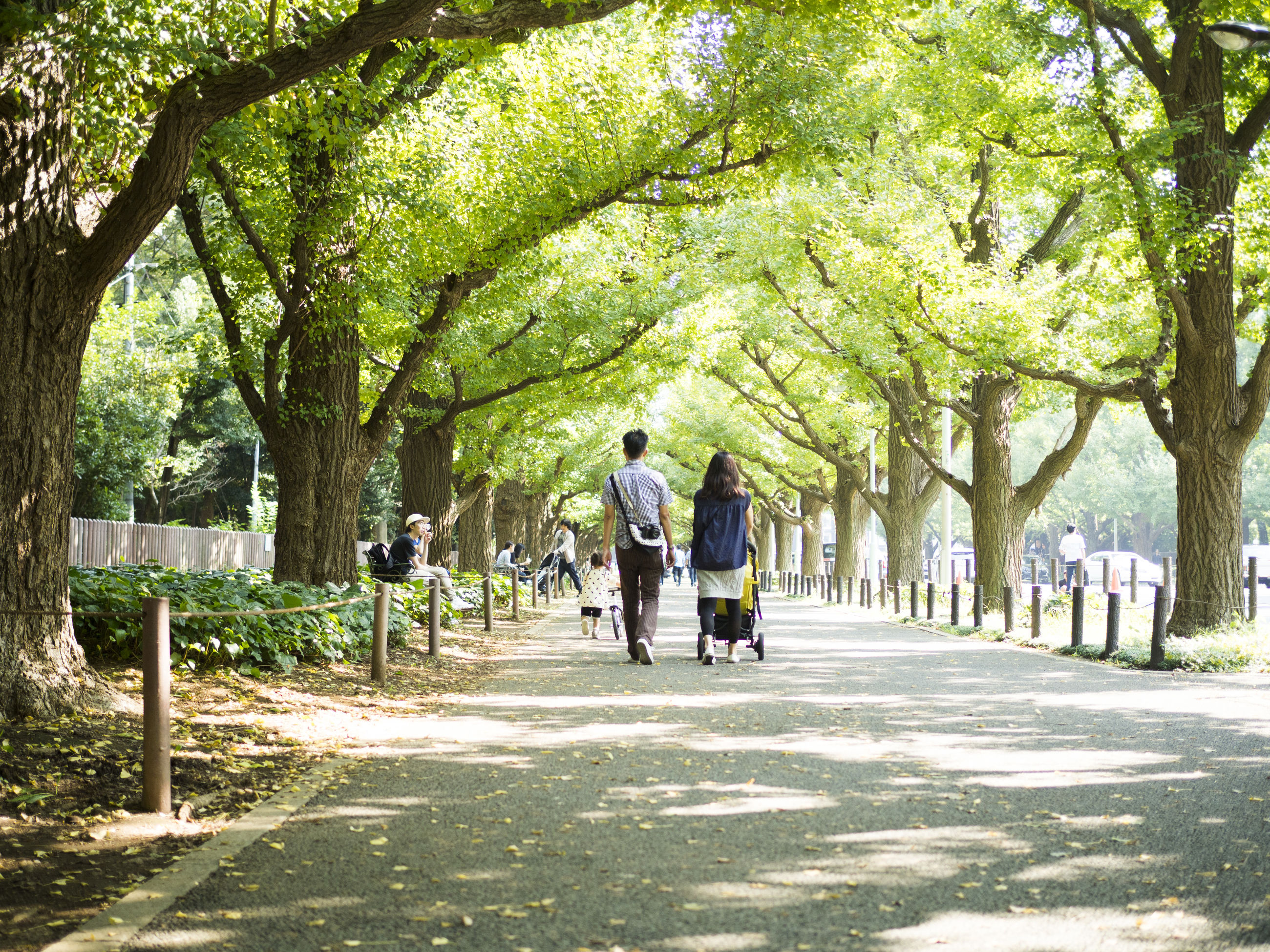 REAR VIEW OF TWO PEOPLE WALKING ON FOOTPATH IN PARK