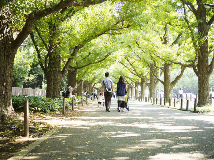 Rear view of people walking on footpath in park