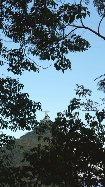Riodejaneiro Cristoredentor Corcovado National Park Morro Do Corcovado Asuszenfone5 AsusZenfone5Photography Photooftheday Cariocapics