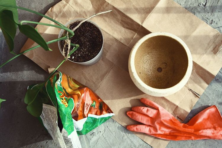 Gardening Food And Drink Drink Cup Coffee One Person Coffee - Drink Coffee Cup Lifestyles Holding Women High Angle View Finger Hand Human Body Part Refreshment Mug Human Hand Real People Table Freshness