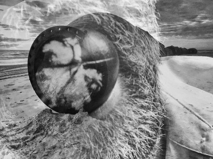 Close-up of bread in sea