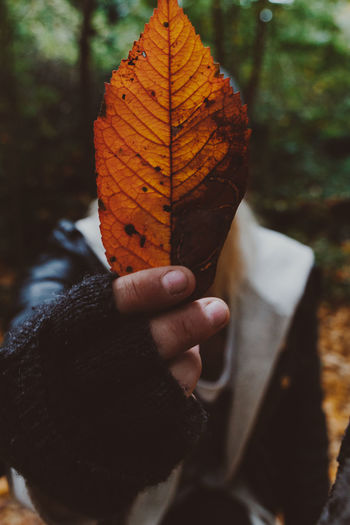 Person holding autumn leaf