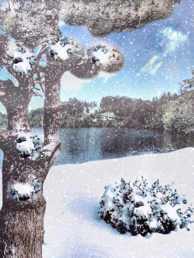 Photo from online class, Mobile Art Mastery. Landscape_photography Snow Composite apps used Photoshop Fix, Remix Icolorama Image Blender Superimpose Snow Daze