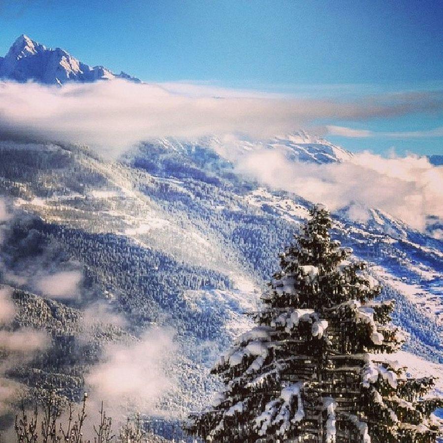 Austria Rakousko Zellamsee Mountains naturefreeskifreeridelifestylefreelifesnow