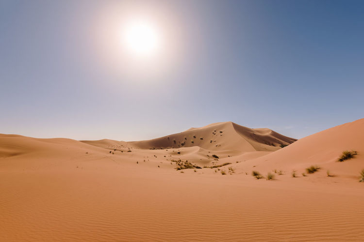 Panormaic view over the dunes of Erg Chebbi Desert near Merzouga, Morocco. Africa Arid Climate Desert Dune Erg Chebbi Hot Landscape Merzouga Morocco Nature Orange Outdoors Sahara Sand Sandy Scenics Sky Summer Sunlight Sunrise Sunset Tranquil Scene Tranquility Travel Travel Destinations