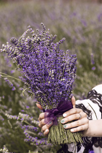 Close-up of person holding bouquet