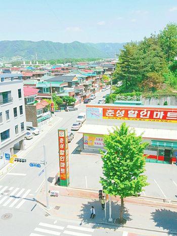Korea Daliy