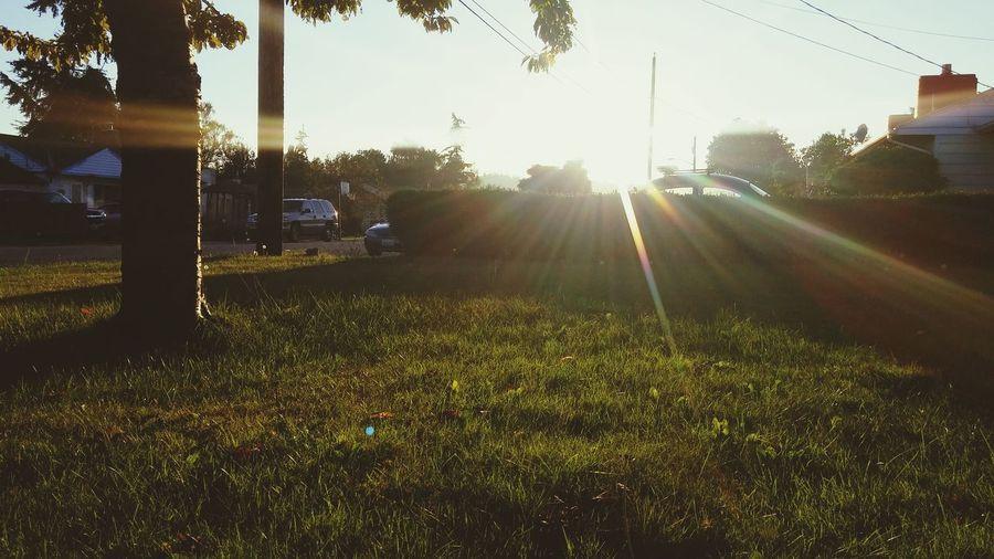 Where I Sit And Smoke Sunset Neighborhood