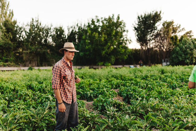 Man looking away standing on agricultural field