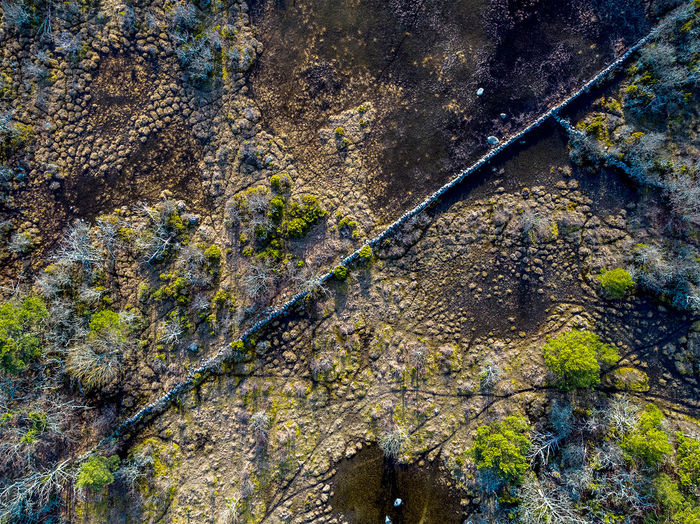 A Bird's Eye View Sweden Nature Nature Photography Full Frame Backgrounds Textured  Close-up Moss Day Growth Nature Weathered Outdoors Öland Stonewall Nature No People Dronephotography Man Made Object