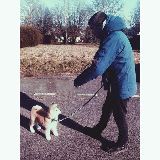 my2buddys My Two Babies Love Doggy Hatchi Dog Steven