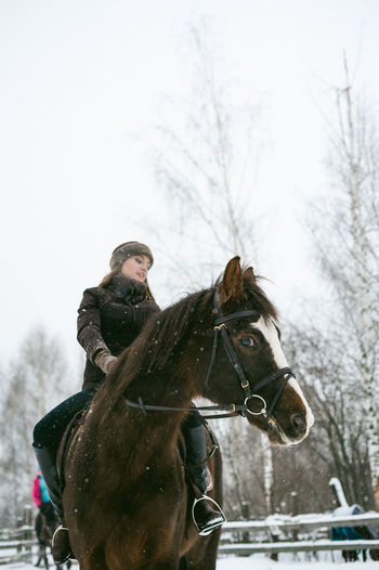 Low Angle View Of Beautiful Woman Riding Horse On Snow Covered Field