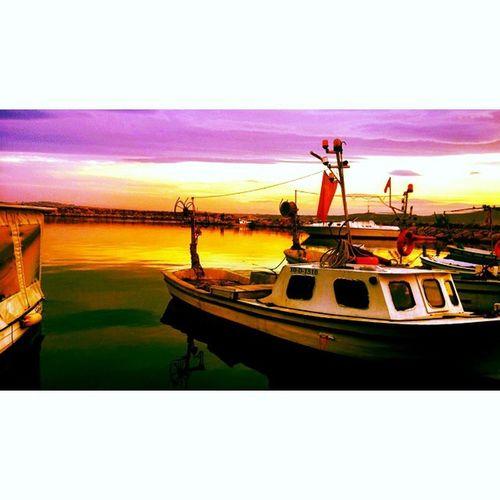Tatlisu Tatlısu Bandırma Bandak Sea Deniz Gunes Mor Purple Life