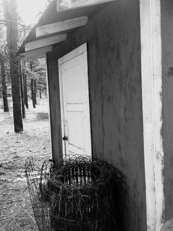 Outhouse in the pines. Outhouse Blackandwhite Black & White Blackandwhitephotography EyeEm Best Shots - Black + White