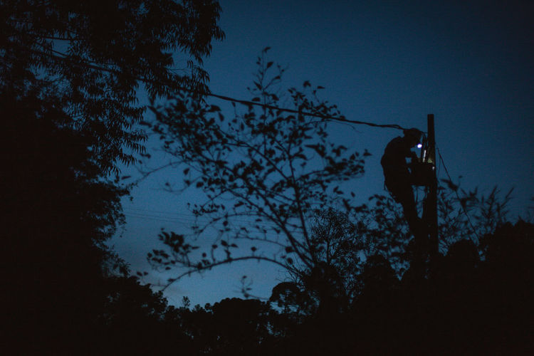 blackout in countryside Tree Silhouette Low Angle View One Person Men Activity Real People Outdoors Dusk Blue