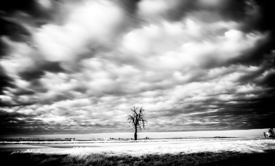 California California Dreamin Beauty In Nature Blackandwhite Blackandwhite Photography Cloud - Sky Landscape Nature Outdoors Scenics Tranquil Scene Tranquility Winter