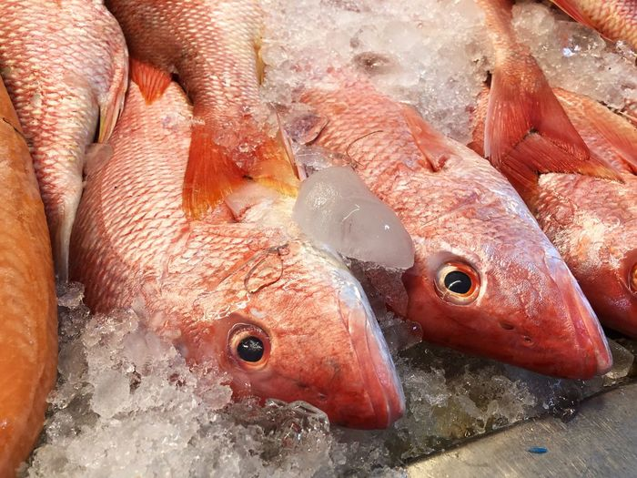 Close-Up Of Fish On Ice At Market