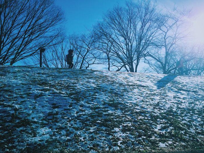 Shibuya Blue Sky Snow ❄ Snow Children