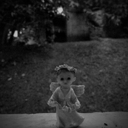 Angel Wings Secret Silence Blackandwhite Photography Edition