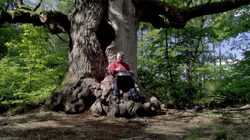 Stills from the Video Footage Adult Beauty In Nature Casual Clothing Day Full Length Green Growth Hang Leisure Activity Lifestyles Man Musician Nature Oak Tree Old Tree One Person Outdoors People Playing Music Outside Real People Sitting Tree Video Still