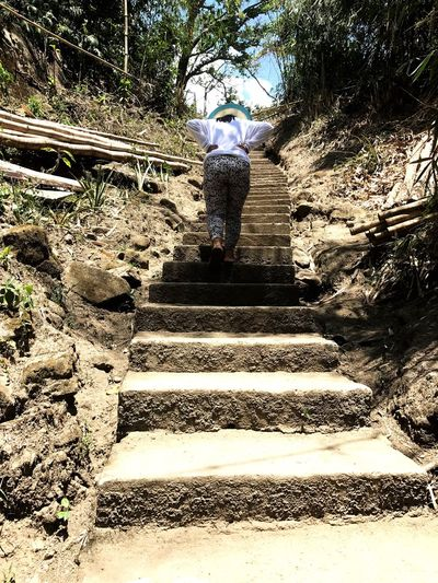 The Street Photographer - 2017 EyeEm Awards Steps One Person Rear View Full Length Steps And Staircases Staircase Walking Real People Men Day Leisure Activity The Way Forward Women Adventure Nature Climbing Standing Adults Only People Adult