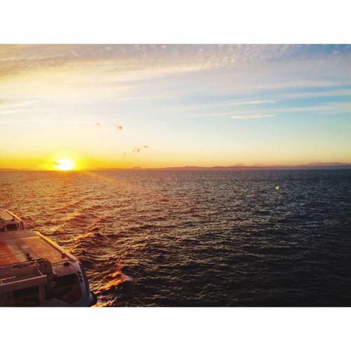 Sunset Sea Norwegian Ship Life Vacation Scenery