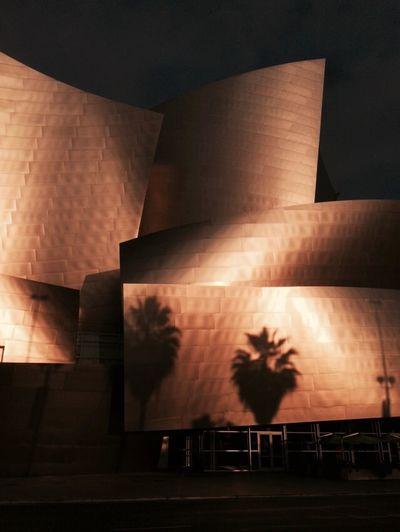 LA, Urban Landscape, Disney Concert Hall, Citiscape